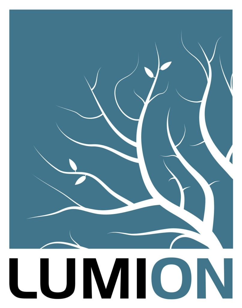 Lumion Software Logo